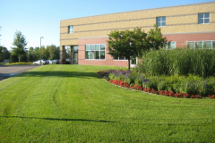 commercial lawn maint
