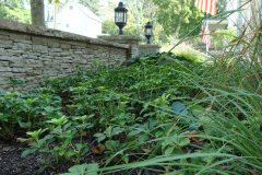 Hardscaping in Springfield Township (4)