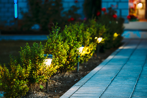South Jersey Commercial Landscape Lighting Services