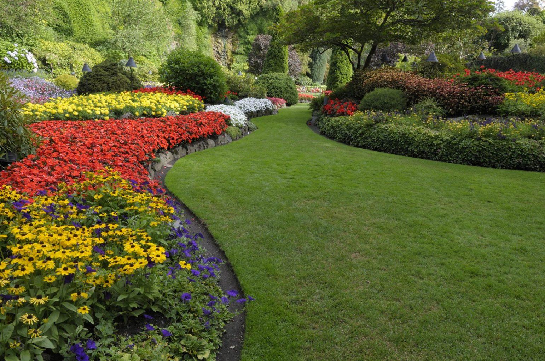 Medford Landscape Architects